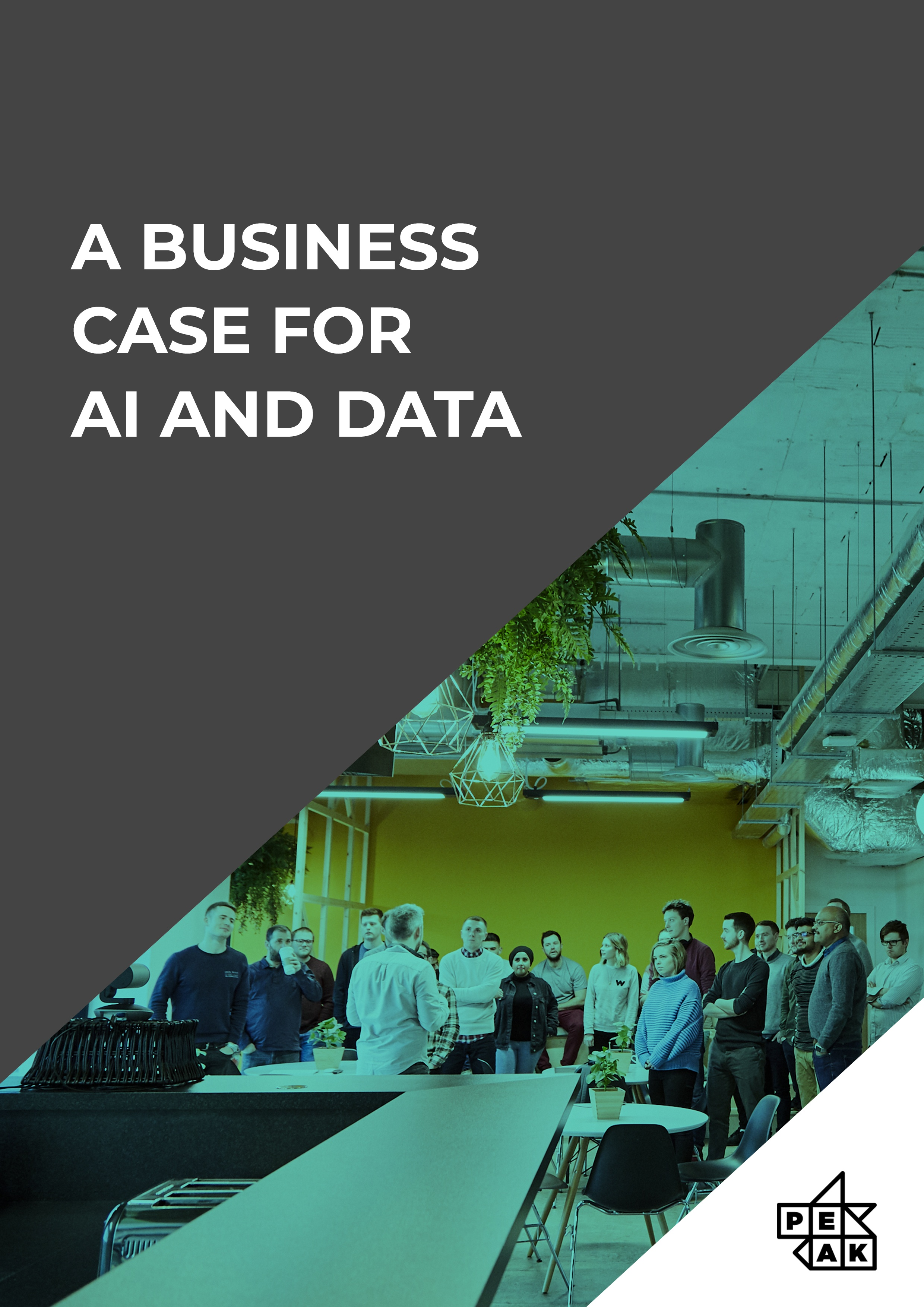 Business Case For AI and Data